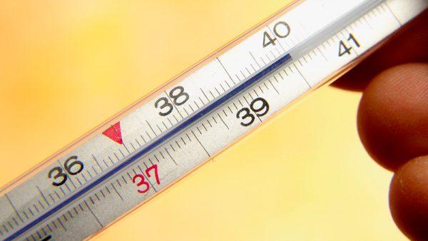 Температура после удаления желчного пузыря лапароскопия
