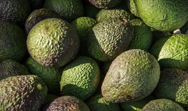 Авокадо после удаления желчного пузыря