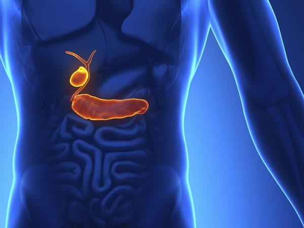 Симптомы появления спаек после удаления желчного пузыря
